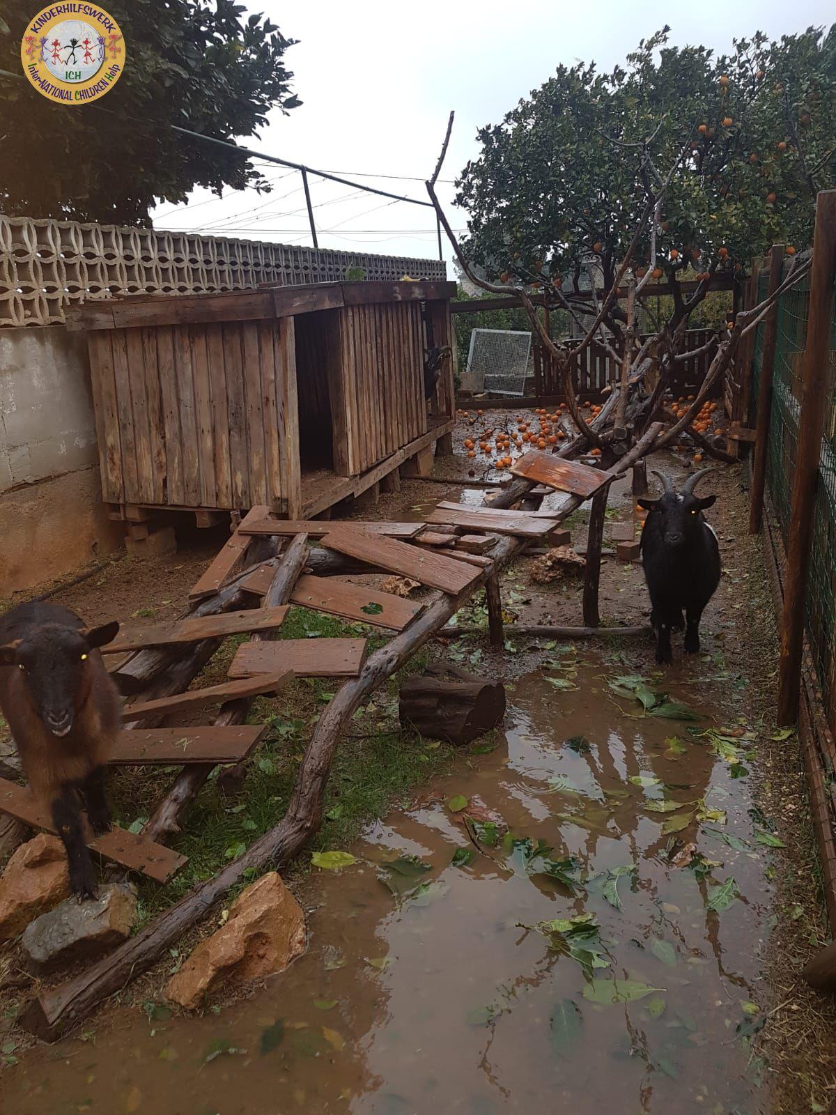 Schwere Unwetter verwüsteten auch Therapiehof Pequeno Rancho in Denia – Spanien